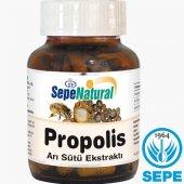 Propolis Extract & Arı Sütü 90 Kapsül 380 Mg Propo...