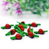 Ahşap Kutu İçinde Küçük Boy Uğur Böceği Süslü Yeşil Mandal Süs