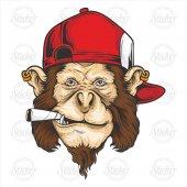 Maymun Sticker 17025