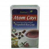Naturpy Atom Çayı İçime Hazır Küp Kış Çayı...