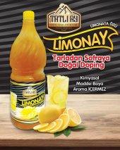 Ev Yapımı Limonata Özü 2 Kg (12 Lt) Katkısız