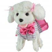 Furry Kumadalı Süslü Köpeğim