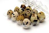 Bıldırcın Yumurta Viyolü 12 Li (50 Adet)