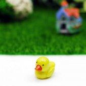 Terrarium Minyatür Bahçe Mini Ördek