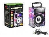 Pl 4113 Fm Speaker