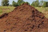 Torubahçe Sığır , İnek , (Büyük Baş Hayvan Gübresi) Çiçek Ve Bitkileriniz İçin 40 Lt