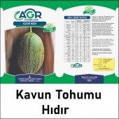 Agrosse Hıdır Kavun Tohumu 10 Gr