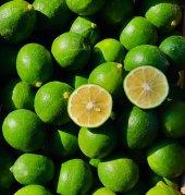 Yaz Limon 7 Kg