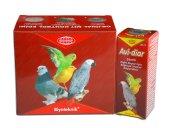 Kuşlar İçin Bağırsak Sistemi Geliştirici Avi Diar