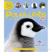 Life Cycles Polar Lands (Discover Earth&#039 S Ecosystems) Sean Callery