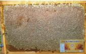 10 Kg Petek Bal (Yenı Mahsul)altınkovan