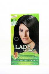 Lady İn Color Saç Boyası (Mavi Siyah) 1.1