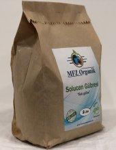 Mfz Organik Solucan Gübresi, %100 Ekolojik Kraft Paket 2 Litre