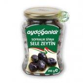 Siyah Yağlı Salamura Zeytini 240gr X Small 321 350...