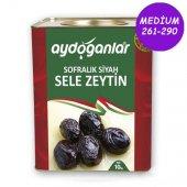 Siyah Yağlı Salamura Zeytin 10kg Medium 261 290