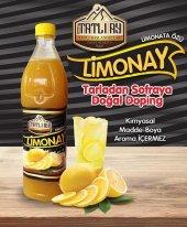 Ev Yapımı Limonata Özü 1 Kg (6 Lt) Katkısız